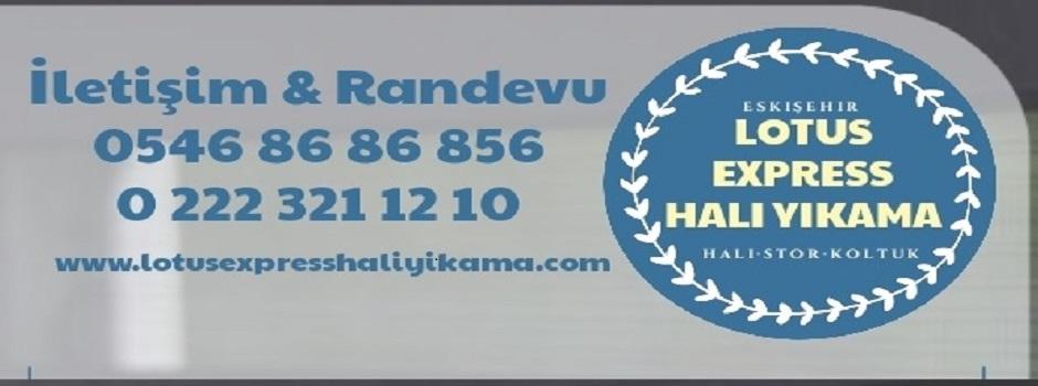 LOTUS HALI YIKAMA